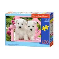Puzle Castorland  120 B-13494 WHITE TERRIER PUPPIES