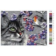 Glezna pēc numuriem - Kaķis un putns 30x40, A125