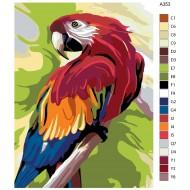 Glezna pēc numuriem - Papagailis 30x40, A353