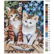 Glezna pēc numuriem - Kaķēni 30x40 KRYM-R2