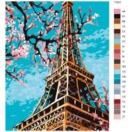 Glezna pēc numuriem - Eifeļa tornis, 40 x 50, KTMK-71551