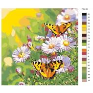 Glezna pēc numuriem - Taureņi un puķes 40x40 RA156