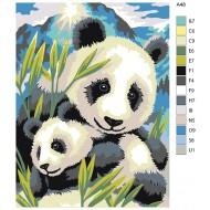 Glezna pēc numuriem - Panda 30x40, A48