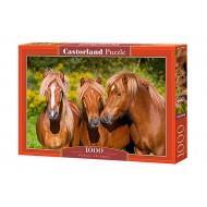 Пазл Castorland  1000 C-103959 HORSE FRIENDS